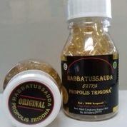 Obat Herbal Habbatussauda Extra Propolis Trigona
