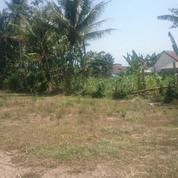 Tanah Di Malang Pakisaji