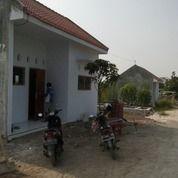 Rumah Di Kost Mojosari