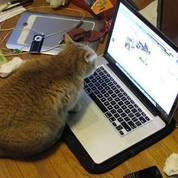 Di BELI Laptop Notebook Macbook BDG