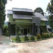 Villa Mewah Bogor