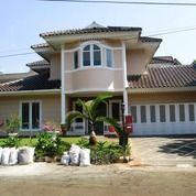 Rumah Di Bintaro Cikini Sektor 7 Lt 560 M Ap