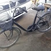 Sepeda Cewek Keranjang Bekas