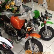 Motor Mini Gorilla 50cc Neww