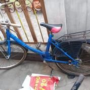 Sepeda Cewek Dewasa Warna Biru Bes