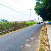 Tanah Untuk Cluster Atau Invest 5 Menit Dari Alun-Alun Tarogong Garut