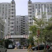 Kios Apartemen City Park Tower CC (Ukuran 3x5 M)