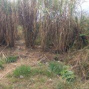 Lahan/Tanah Matang Siap Bangun 4100m2 Gandasari Soreang SHM Mainroad Jalan Raya