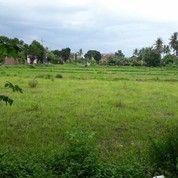 Tanah Ketapang Sidoarjo (Belakang Ispatindo)