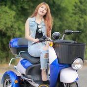 SEPEDA MOTOR LISTRIK MAGNUM TRICYCLE INDO 3