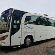 Bus Hercules 1521