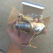 Reel Pancing Golden Fish Dgn 10 Bearing