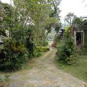 Villa Ciloto Puncak Bogor Jawa Barat LT.7135mtr Shm 6m Nego