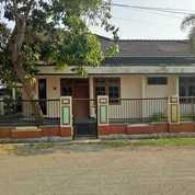 Rumah Klasik Pondok Mutiara Harga Sewa Murah