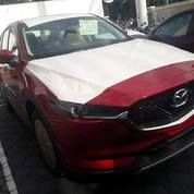 ALL NEW MAZDA CX 5 ELITE RED