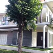 Rumah Minimalis Murah Dekat Gwalk, PTC, CIPUTRA SCHOOL, STARBUCK
