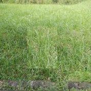 Kavling Raffles Garden Citraland