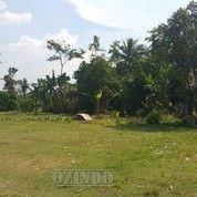 Tanah Lokasi Strategis Di Balaraja Dekat Perumahan Citra Maja (LT 8361 M2)