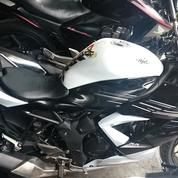 Motor Bekas Kawasaki Ninja 250SL 2014 Kondisi Normal
