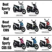 All New Beat Sporty