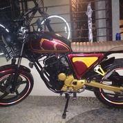 Scorpio Custom 2011
