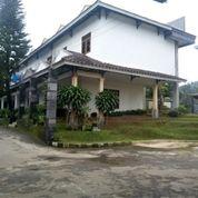 Hotel Murah Bogor Cisarua Strategis Lengkap Sejuk Aman Nyaman