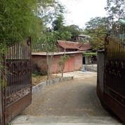 Rumah Luas Tanah Luas + Joglo Pudak Payung