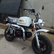 Motor Mini New Monkey Gorilla Gazgas 2019 Jakarta