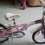 Sepeda Anak Skylab Wim Cycle