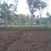 Tanah Kavling Murah Malang Kota SHM