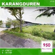 Tanah Murah Luas 4.787 Poros Jalan Di Karangduren Pakisaji Kota Malang _ 71.19