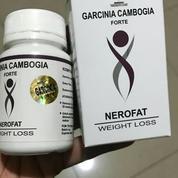 Obat Pelangsing Badan Garcinia Cambogia Asli