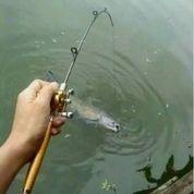 Alat Pancing Portable Bentuk Pulpen 1m / Joran Mini Portable Extreme Pen Fishing Rod Length 1 M