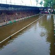 Kolam Pemancingan Galatama & Cafe Paling Aktif Sumedang Jatinangor