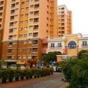 Kios Apartemen City Resort Tower Bougenville (Ukuran 8,2x10 M)