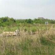 Tanah Di Gunung Anyar Tambak, Lokasi Strategis Cocok Untuk Membangun Rumah Impian, Surabaya