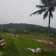 Murah Tanah Pinggir Jalan Raya 2665 M2 Pondok Salam Purwakarta