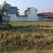 Tanah Murah 1,500 M2 Di Jl. STMK Dr. Mansyur Padang Bulan Medan