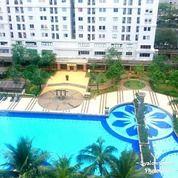 Apartemen Green Palace Kalibata Sewa Murah Tahunan Full Furnish 2BR Type Besar