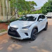Lexus NX300 White On Black 2018