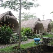 Resort & Wisata Alam Di Gunung Salak, Bogor