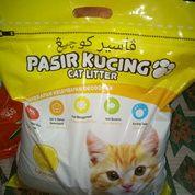 Pasir Wangi Gumpal Untuk Pup Kucing
