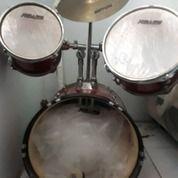 Drum Rolling Junior