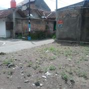 Tanah Istimewa Di Selatan Pasar Kotagede Jogjakarta(KODE F.1535)