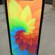 Iphone 8 Plus 64 Gb Bisa Dicicil Dengan Angsuran Terjangakau