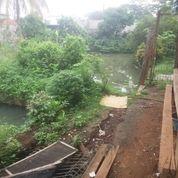 Kolam Ikan (Empang) Bagus Buat Investasi Cilodong Depok
