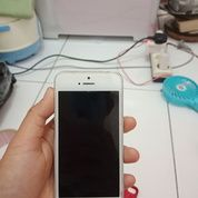 Iphone 5 White 32 GB