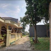 Rumah Second Nyaman Dan Asri Di Bambu Apus Pamulang Tangerang Selatan