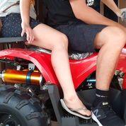 ATV 110 - 1000cc