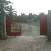 Tanah Di Binjai Kebun Lada (0853-3488-3388)